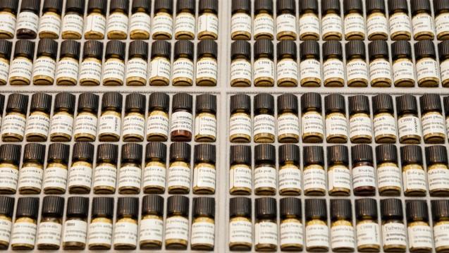 Umstritten: Welche Rolle soll die Homöopathie im Gesundheitswesen haben? (Foto:Daniel Bahrmann / Fotolia)