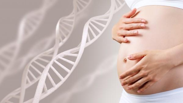 Rät Embryotox zum Schwangerschaftsabbruch?