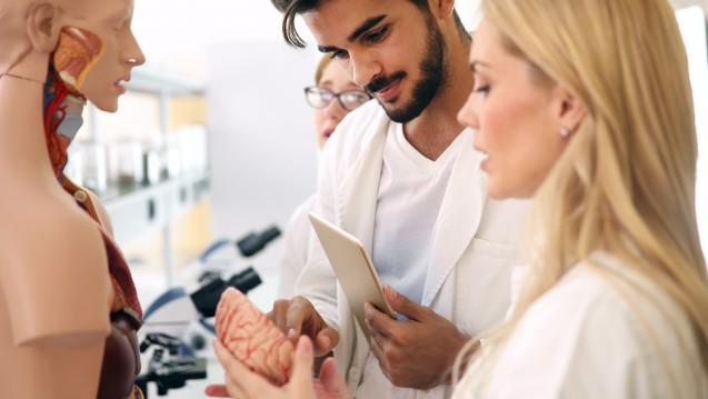 Lohnender Aufwand? Medizinstudierende wurden befragt, was sie von ihrer beruflichen Zukunft und den Arbeitsbedingungen erwarten.  (m / Foto: nd3000 / stock.adobe.com)