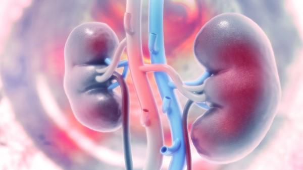 Sotagliflozin– reduziert Blutdruck und Nierenfunktion?