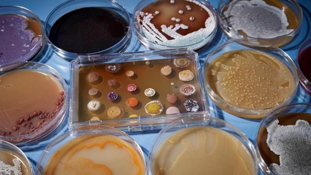 Antibiotika - es soll geforscht werden, aber für die verfügbaren Mittel wollen die Kassen kaum zahlen. (Foto: Sanofi)