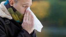 Berichtet der Kunde von grün-gelblichem, zähen Sekret oder starken Kopfschmerzen, besteht der Verdacht auf eine bakterielle Zweitinfektion. (Foto: contrastwerkstatt / stock.adobe.com)