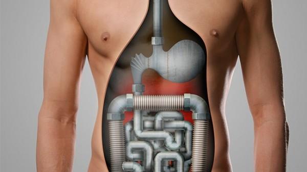 Magen-Darm-Tipps vom Apotheker