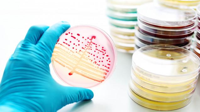 In den USA haben Forscher einen 30-minütigen Schnelltest zur Erkennung von Antibiotika-Resistenzen entwickelt. (Foto: fotolia / jarun011)