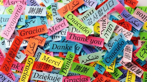 Nordrhein: Apotheken sprechen viele Sprachen