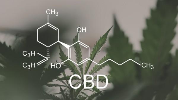Wie wirkt Cannabidiol?