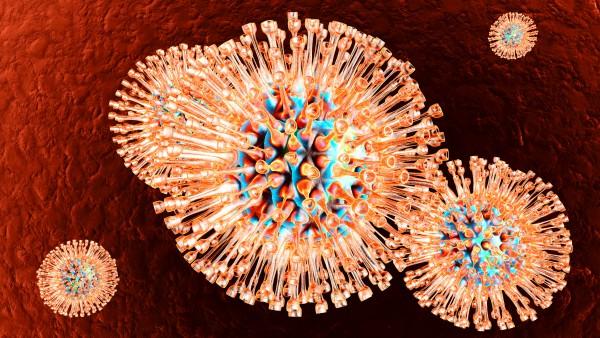 Neue Angriffspunkte zur Bekämpfung von Herpesvirus