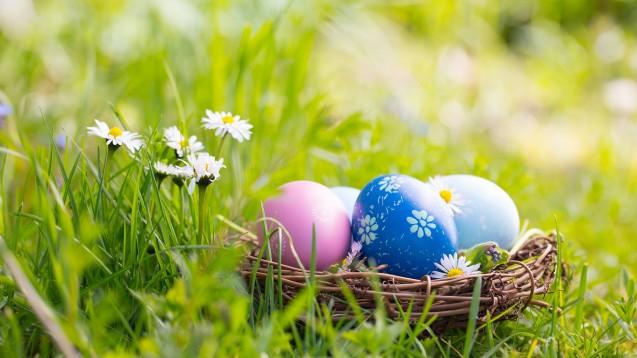 Für viele ist es an Ostern Tradition, dass (vorwiegend) Kinder bunte Osterei suchen. Diese werden dann meist auch gegessen. Doch wie viele Eier sind gesund? (Foto: Floydine / stock.adobe.com)