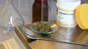 Neue Sonder-PZN für Cannabis ab 1. April
