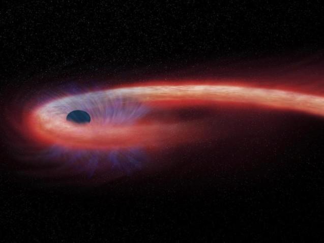 Die von der NASA bereitgestellte künstlerische Darstellung zeigt einen Stern, der von einem schwarzen Loch geschluckt wird und dabei einen Schweif aus Röntgenstrahlen, dargestellt in rot, abgibt.Foto: M. Weiss/NASA/Chandra X-ray Observatory