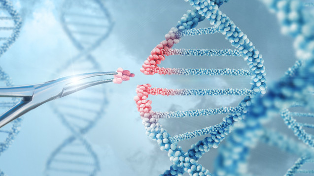 Genschere CRISPR-Cas9