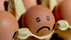 Wie schädlich sind Fipronil-haltige Eier? Das BfR hat eine erste Einschätzung abgegeben. (Foto: picture alliance)