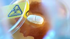 Neue Hoffnung in der Bekämpfung des nosokomialen Keims MRSA: Wissenschaftler der TU Berlin haben eine neue Antibiotikaklasse entdeckt. ( r / Foto: Imago)