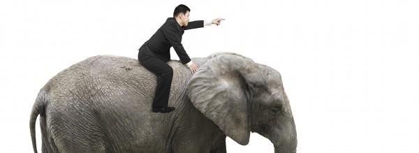 """How to move an elephant"""