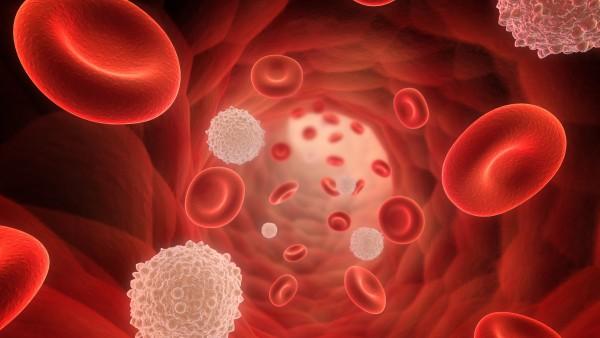 Herausforderung Hämophilie-Versorgung