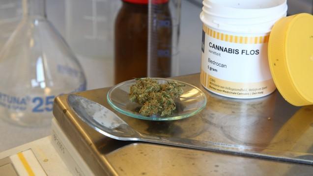Cannabisrezepturen richtig abrechnen: Zum Monatsanfang gibt es neue Sonder-PZN. (s / Foto: imago)