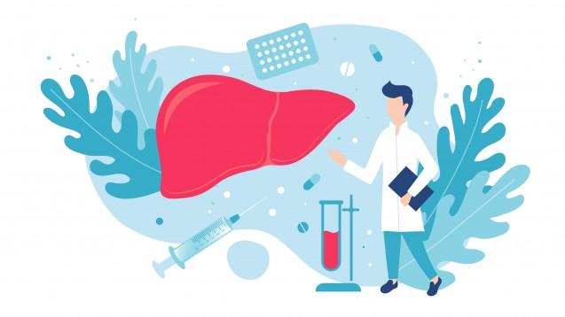 Hauptursache der NAFLD ist zunächst die hyperkalorische Ernährung – allerdings tragen vor allem Zuckerzur Leberverfettung bei, allen voran Fructose. (x / Foto:Kyrylenko / stock.adobe.com)