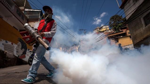 Falsches Timing: Die WHO reagiert oft zu früh oder zu spät - wie hier im Kampf gegen das Zika-Virus. Kritiker fordern dringende Reformen ein. (Foto: dpa)