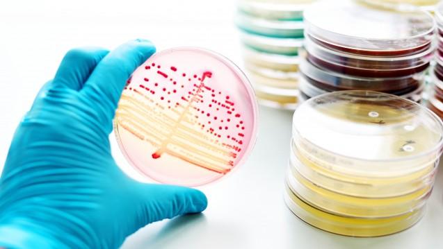 Antibiotika-Resistenzen sind ein großes Problem –doch Vorhersagen sind teils deutlich übertrieben.(Foto jarun011 / Fotolia)