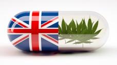 Auch in UK gibt es künftig Cannabis als Medizin. (Foto:fabioberti.it/stock.adobe.com)
