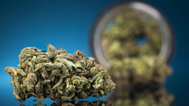 Modellprojekte zur kontrollierten Cannabis-Abgabe könnte es schon bald geben. Der Stadtstaat Bremen plant eine Bundesratsinitiative, die auch anderen Projekten den Weg ebnen könnte. ( r /Foto: imago images / Panthermedia)