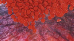Pharmakotherapie der Antikoagulation