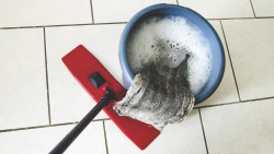 Müssen Angestellte in der Apotheke den Mop schwingen, weil der Chef Geld sparen will oder muss? (c / Foto:garteneidechse / stock.adobe.com)