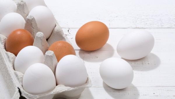 Staatsanwaltschaft ermittelt wegen Fipronil-Eiern