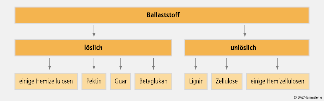 31_ral_ea_ballaststoffe_02.eps