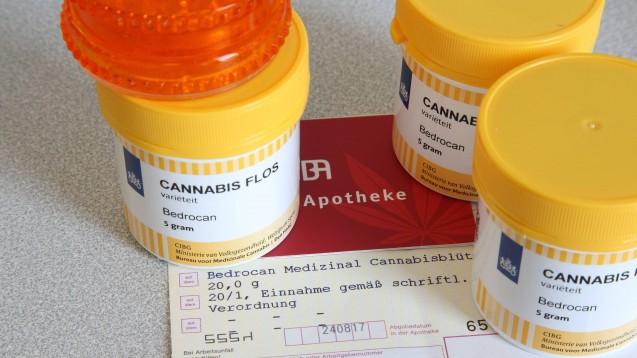 Nun gibt es Cannabis vom BfArM: Das Bundesinstitut für Arzneimittel und Medizinprodukte hat am 7. Juli 2021 den staatlichen Verkauf von Cannabis zu ausschließlich medizinischen Zwecken an Apotheken gestartet. (Foto: IMAGO / epd)