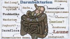 Machen Probiotika bei Antibiotika Sinn? (c / Foto: T. L. Furrer / stock.adobe.com)