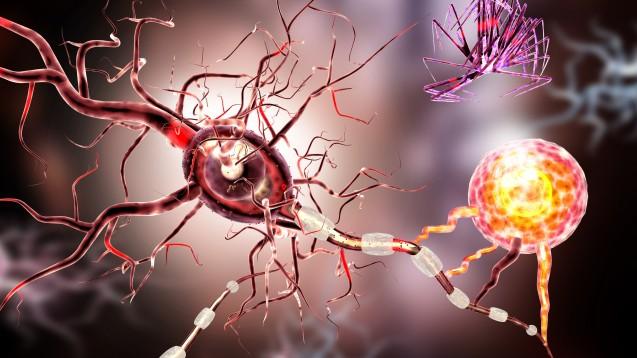 Die EU-Kommission hat Ofatumumab in Kesimpta (Novartis) die Zulassung erteilt. Ofatumumab ist der erste B-Zell-Antikörper, den MS-Patienten sich selbst verabreichen können. (x / Foto:ralwel / stock.adobe.com)