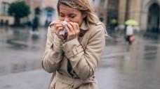 Die Nasenspitze ist eiskalt und ständig zückt man das Taschentuch – auf dieses Phänomen ist im Winter genauso Verlass wie auf gefrorene Windschutzscheiben und beschlagene Brillengläser. (Foto:bernardbodo / stock.adobe.com)