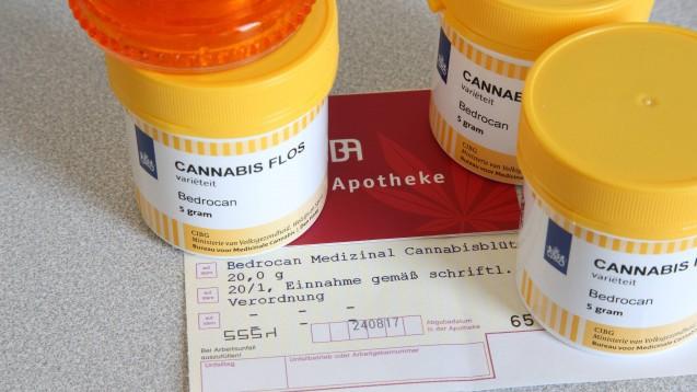 Produkte mit Cannabis und / oder CBD sind Trendprodukte in der Apotheke. In vielen Fällen ist unklar, ob die Produkte überhaupt verkehrsfähig sind. Währenddessen steigt der Markt für medizinisches Cannabis von Jahr zu Jahr. (Foto: IMAGO / epd)