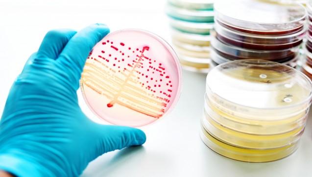 Am europäischen Antibiotikatag wird auf DAZ.online die Frage diskutiert, ob deutsche Ärzte Antibiotika grundsätzlich falsch verschreiben. Könnten viele Resistenzen durch eine andere Verordnungsweise vermieden werden? (Foto: jarun011 / Fotolia)