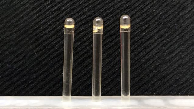 Orales Insulin wird in einer ionischen Flüssigkeit aus Cholin und Geraniumsäure (CAGE) transportiert, die sich in einer magensaftresistenten Kapsel befindet. (Foto: PNAS.org)