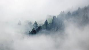 Die Welt im Nebel