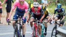 Tramadol ist ab dem 1. März 2019 bei Radsportwettkämpfen verboten. Der Radsport-Weltverband warnt vor Bezug des verschreibungspflichtigen Schmerzmittels aus dem Netz. (m / Foto: imago)