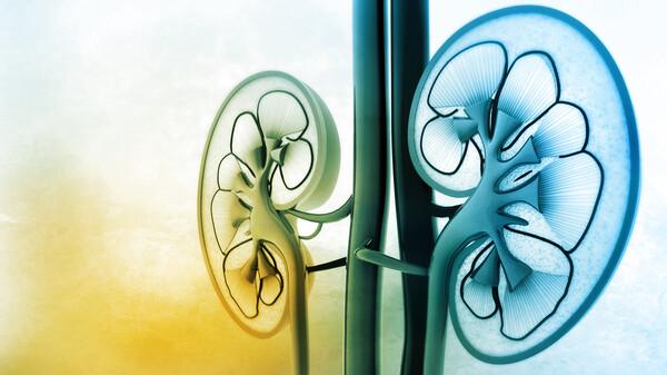 Dapagliflozin nun auch bei Niereninsuffizienz