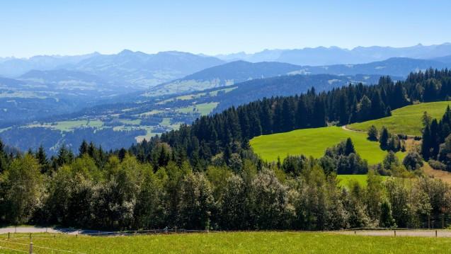 Im österreichischen Bundesland Vorarlberg startet in den kommenden Wochen das Projekt e-Medikation. (Foto: dpa)