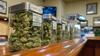 """Es spricht einiges dafür, dass Cannabis zu Genusszwecken in Deutschland künftig in """"lizenzierten Fachgeschäften"""" abgegeben werden darf. Offen ist, ob auch Apotheken die Droge verkaufen sollen. (c / Foto: Rob / AdobeStock)"""