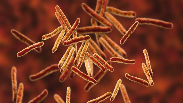 Mycobacterium Tuberculosis bildet vermehrt Resistenzen gehen Therapeutika. (Foto: Imago / spl)