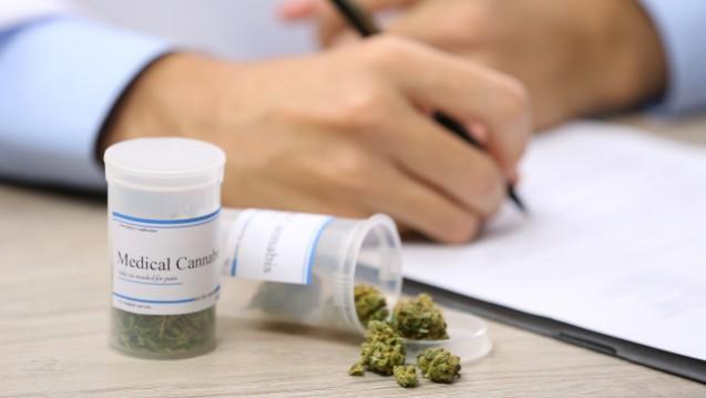 Große Gegensätze: In vielen Bundesstaaten wird Medizinalhanf regelmäßig eingesetzt, doch die US-Drogenbehörde bleibt bei ihrer restriktiven Haltung. (Foto:Africa Studio / Fotolia)