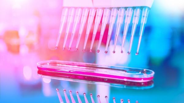 Arzneimittel gegen das Coronavirus SARS-CoV-2: Studien starten