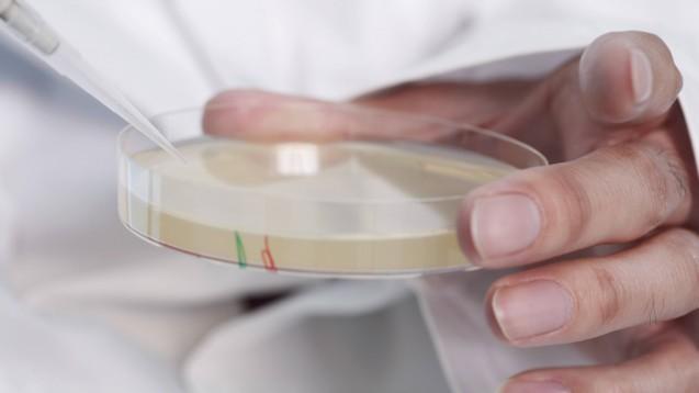Union und SPD wollen dafür sorgen, dass es für Pharmafirmen mehr Anreize zur Erforschung von Reserveantibiotika gibt. (b/Foto: imago images / Westend61)