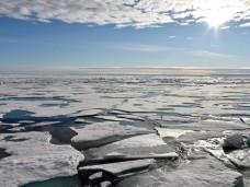 Mindestens drei Mal ist es 2016 in der Arktis zu so etwas wie Hitzewellen gekommen. Foto: Ulf Mauder/Archiv