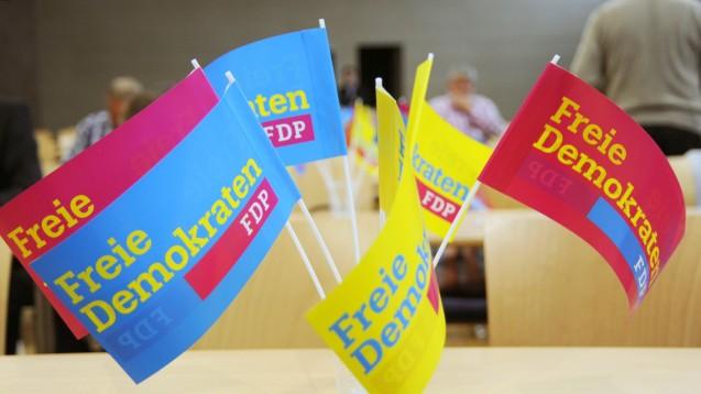Die Diskussionen um die Folgen des EuGH-Urteils auf dem FDP-Bundesparteitag könnten spannend werden. (Foto: dpa)